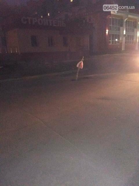 В Северодонецке массово проваливается асфальт, фото-1