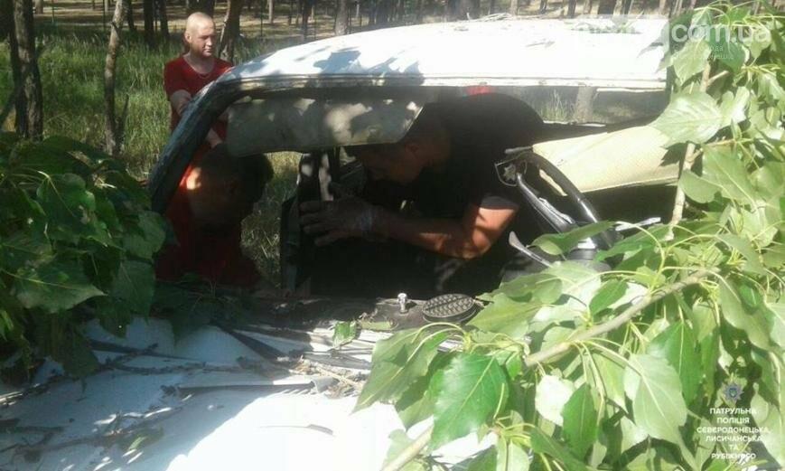 В Северодонецке оса устроила ДТП (фото), фото-3