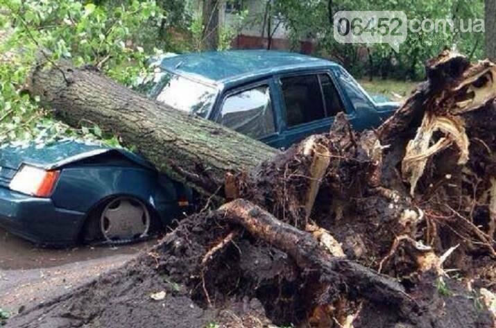 Северодонецк накрыл ураган (фото), фото-13