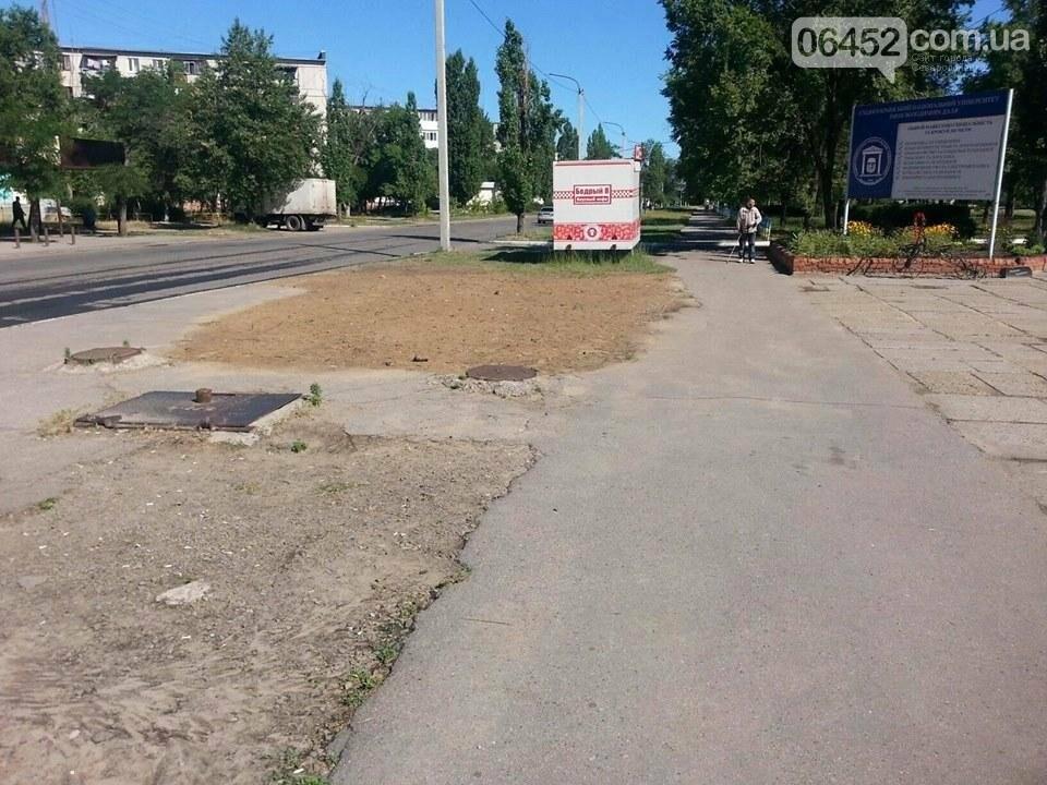 Страх и ужас: остановки общественного транспорта в Северодонецке (фото), фото-2