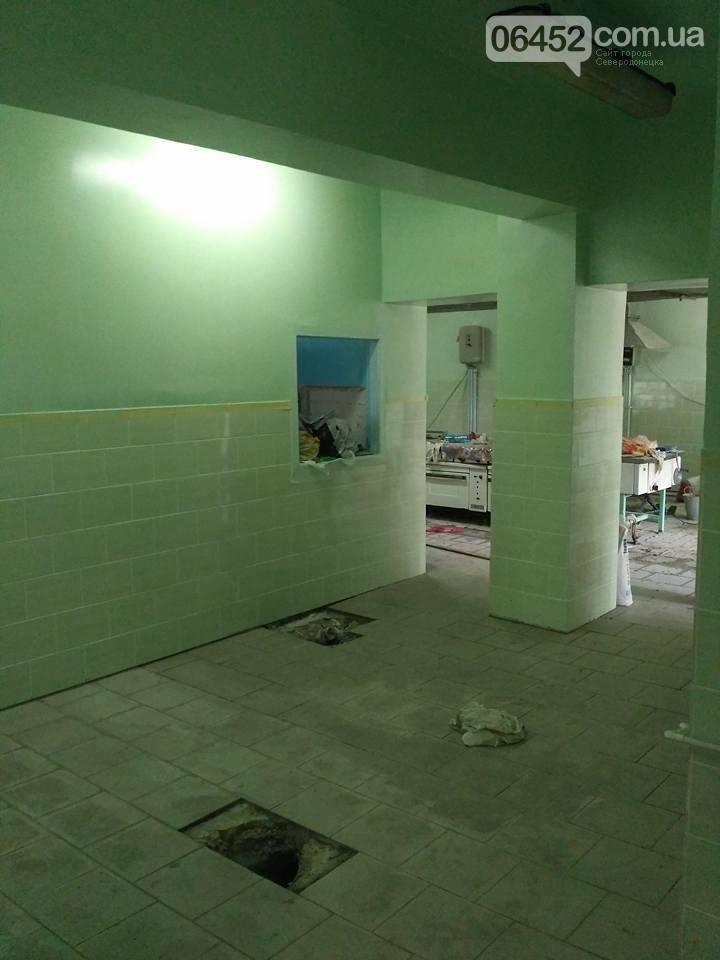 Начат ремонт в Северодонецкой СШ №17 (фото), фото-12