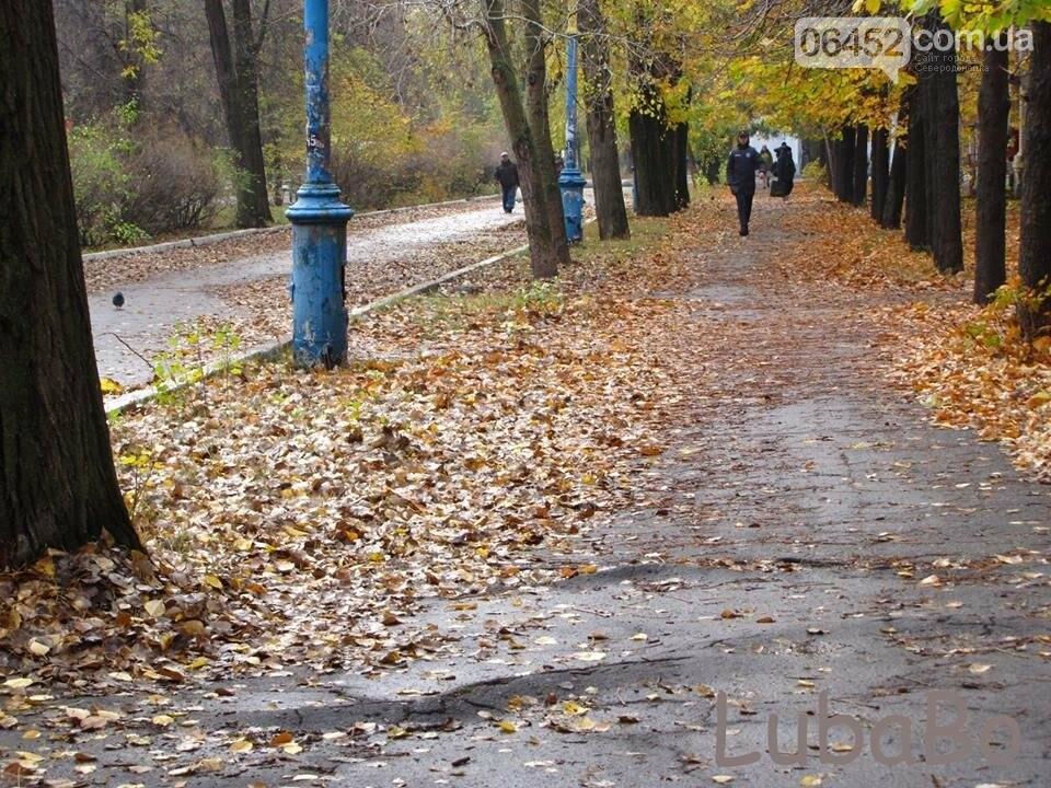 Северодонецк: От тротуаров остались рожки да ножки (фото), фото-2