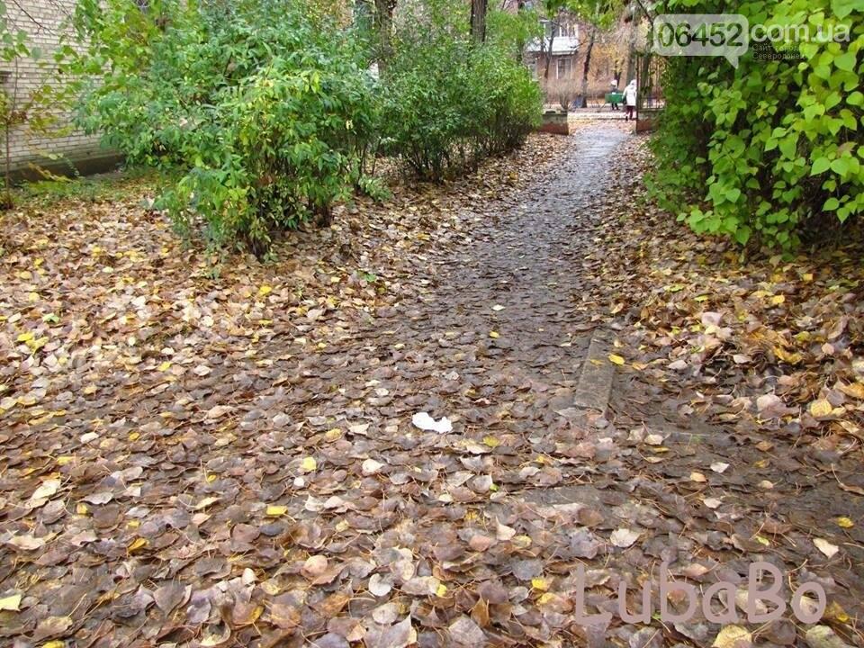 Северодонецк: От тротуаров остались рожки да ножки (фото), фото-1