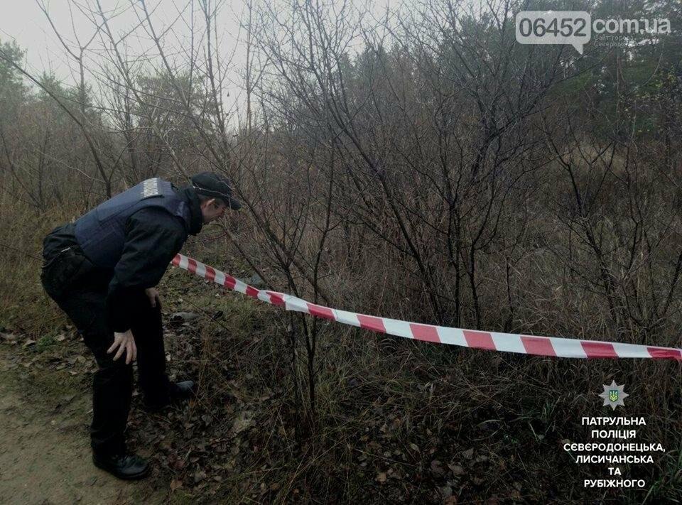 Возвращаясь домой северодончанин нашел в траве гранату (фото), фото-2