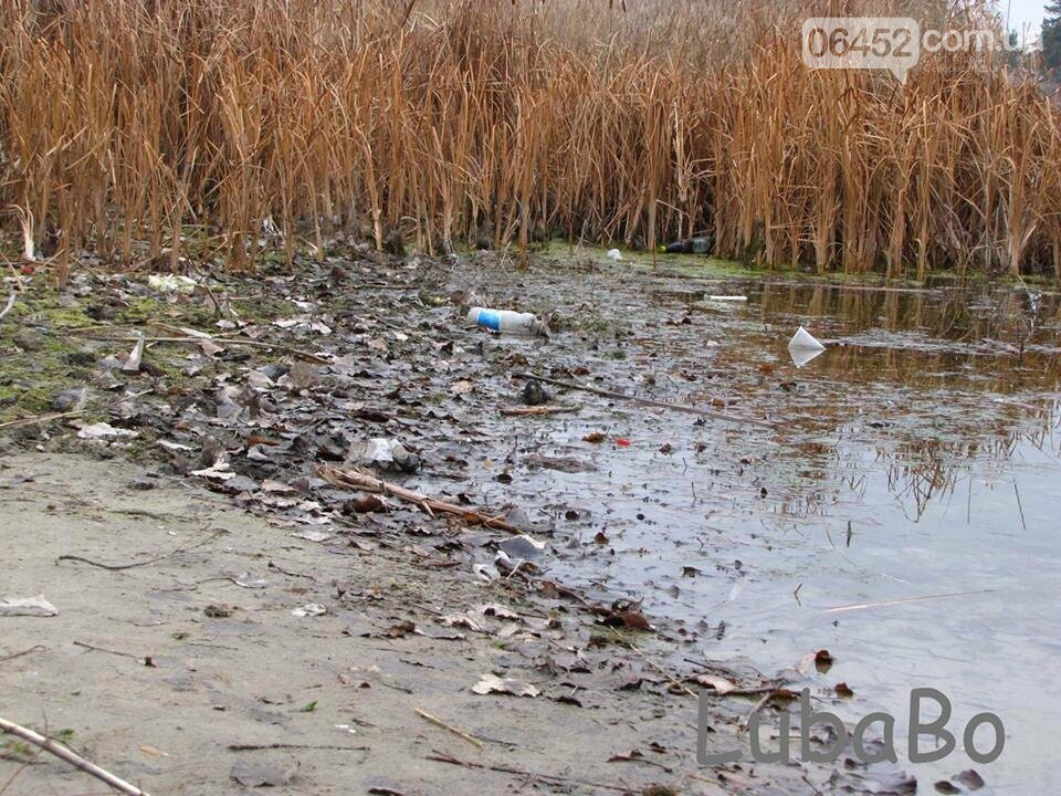 "Северодончанка: ""Парковому озеру пришел кирдык"" (фото), фото-4"