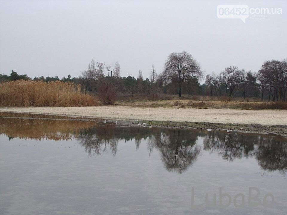 "Северодончанка: ""Парковому озеру пришел кирдык"" (фото), фото-2"
