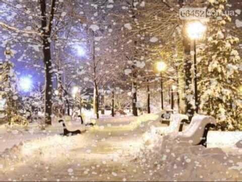 В Северодонецке выпал первый снег (фото), фото-1
