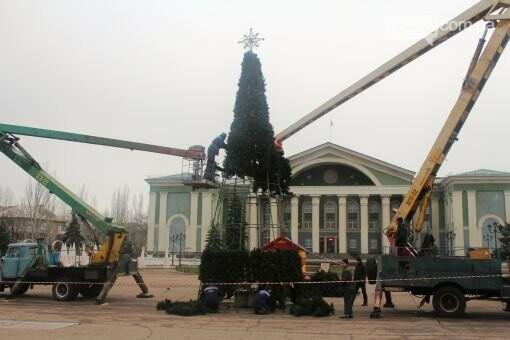 В Северодонецке наряжают центральную новогоднюю елку, фото-1