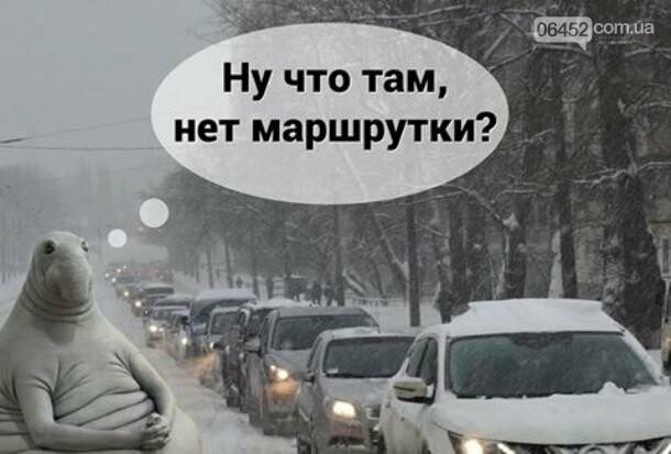 Ждун — самый милый мем 2017 года, фото-7