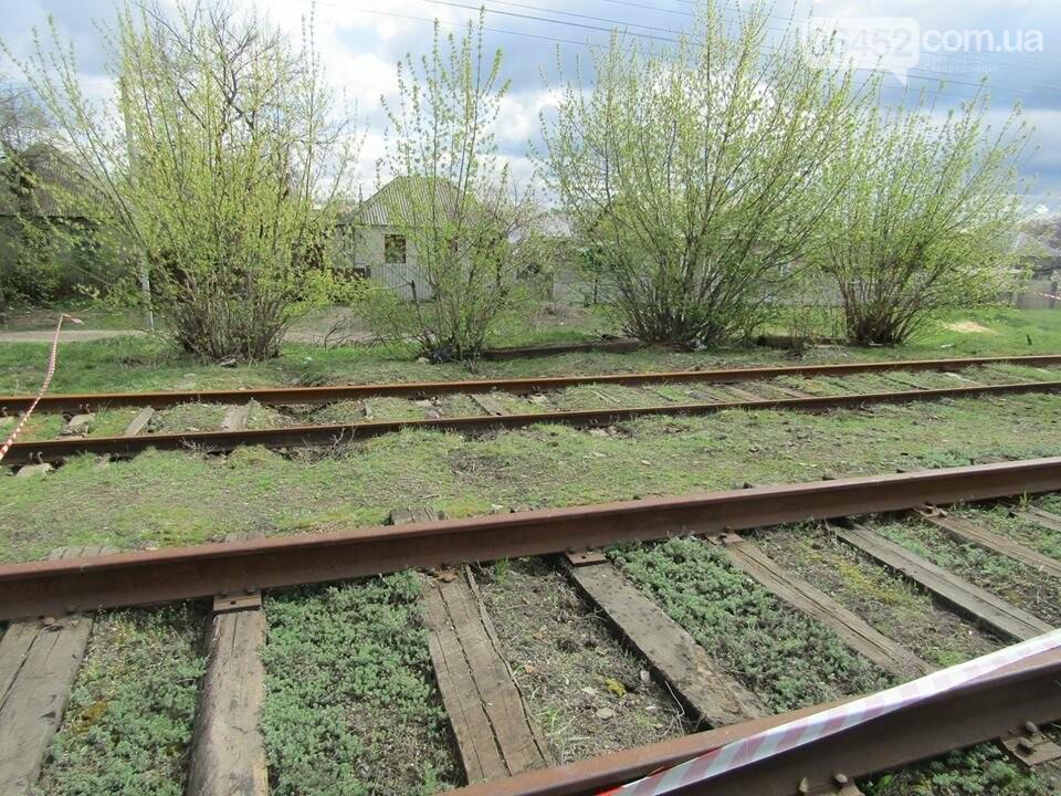 В Рубежном возле железной дороги нашли пакет с гранатами, шашками и патронами (фото), фото-7