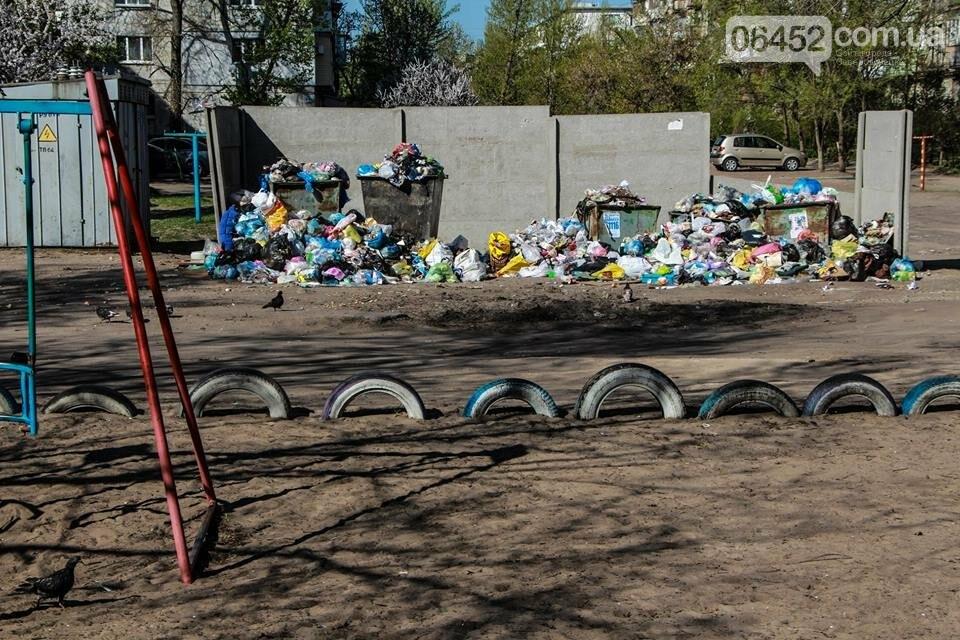 Северодонецк погряз в мусоре (фото), фото-6