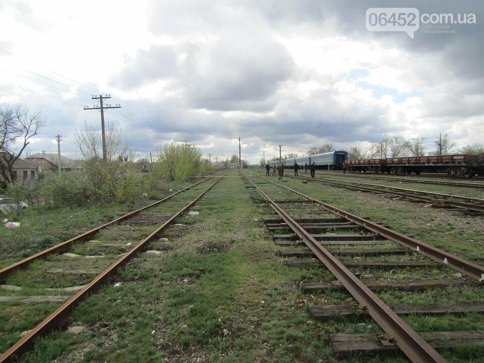 В Рубежном возле железной дороги нашли пакет с гранатами, шашками и патронами (фото), фото-4