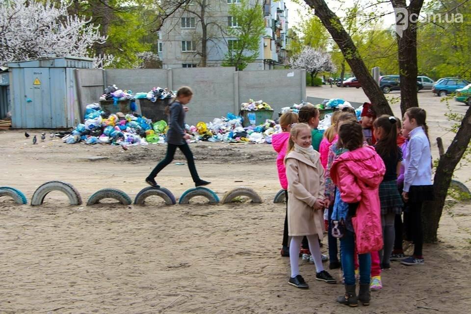 Северодонецк погряз в мусоре (фото), фото-2