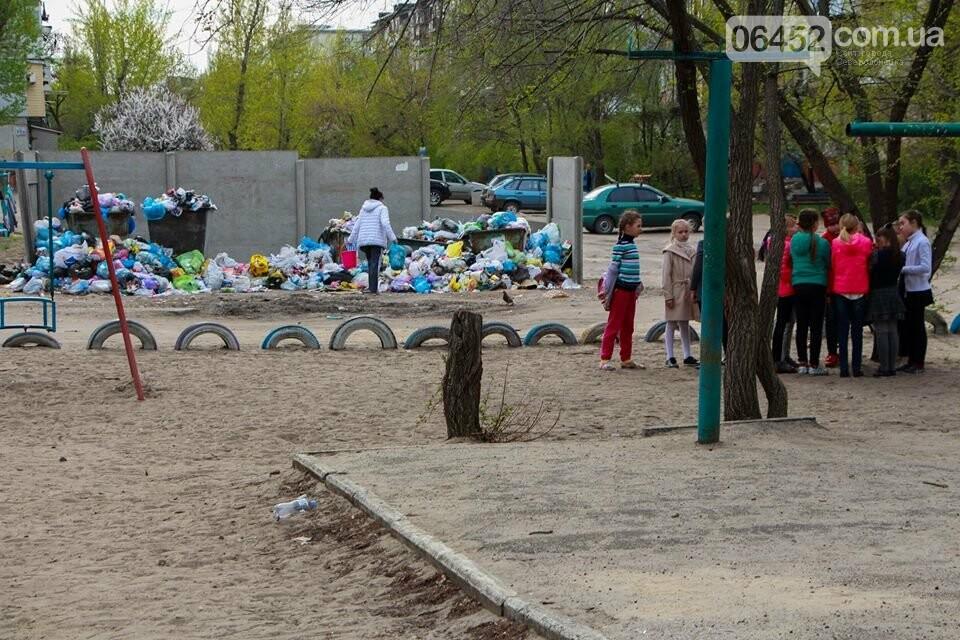 Северодонецк погряз в мусоре (фото), фото-1
