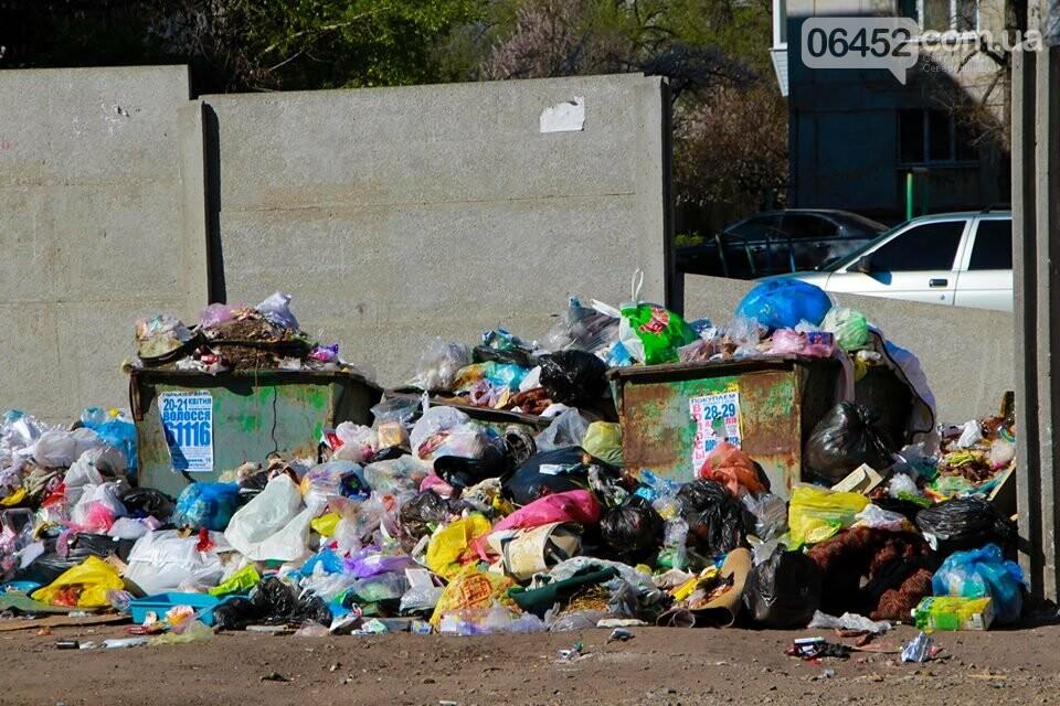 Северодонецк погряз в мусоре (фото), фото-4