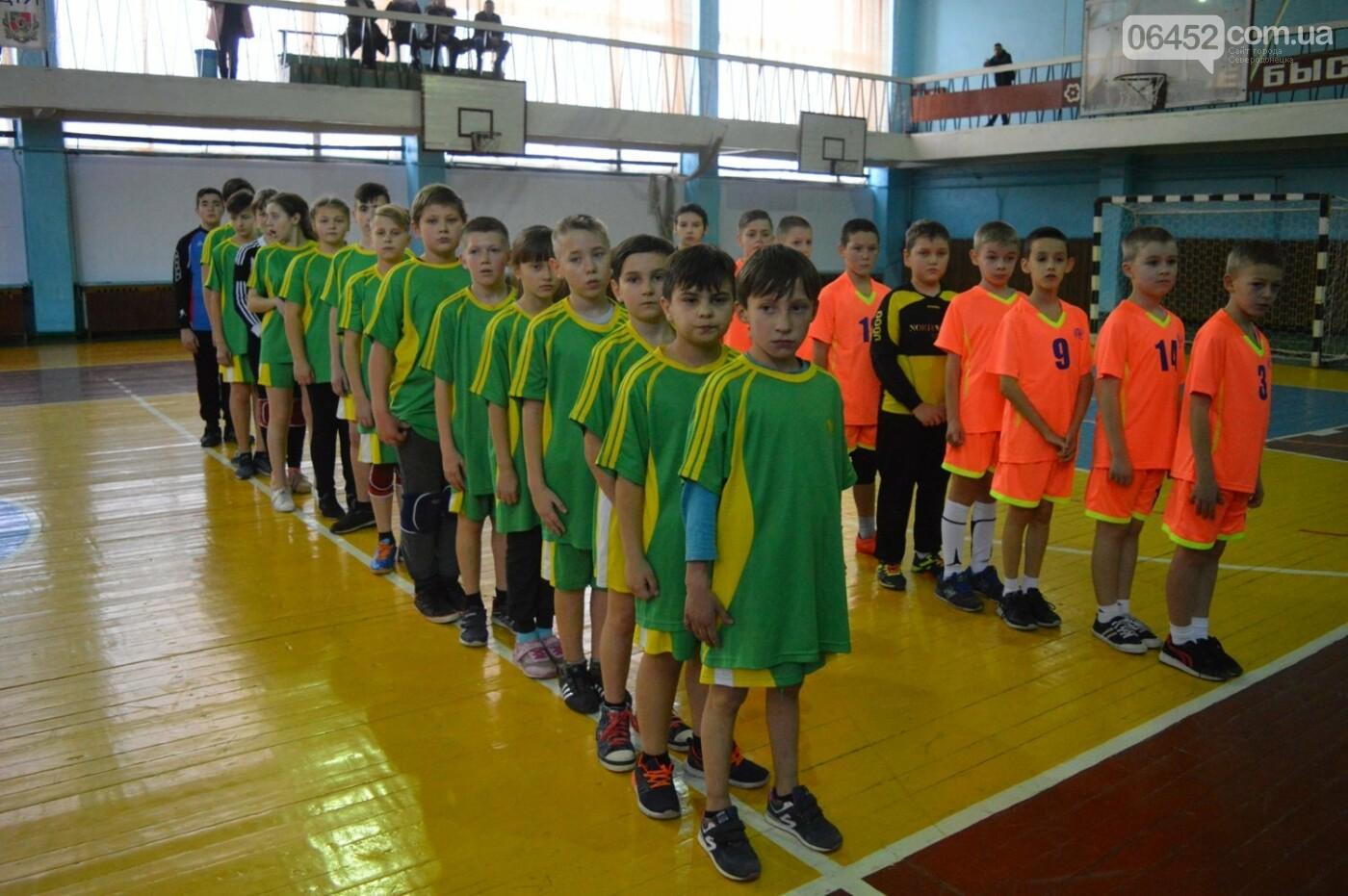 В Сєвєродонецьку відбулась обласна першість з ганболу, фото-1