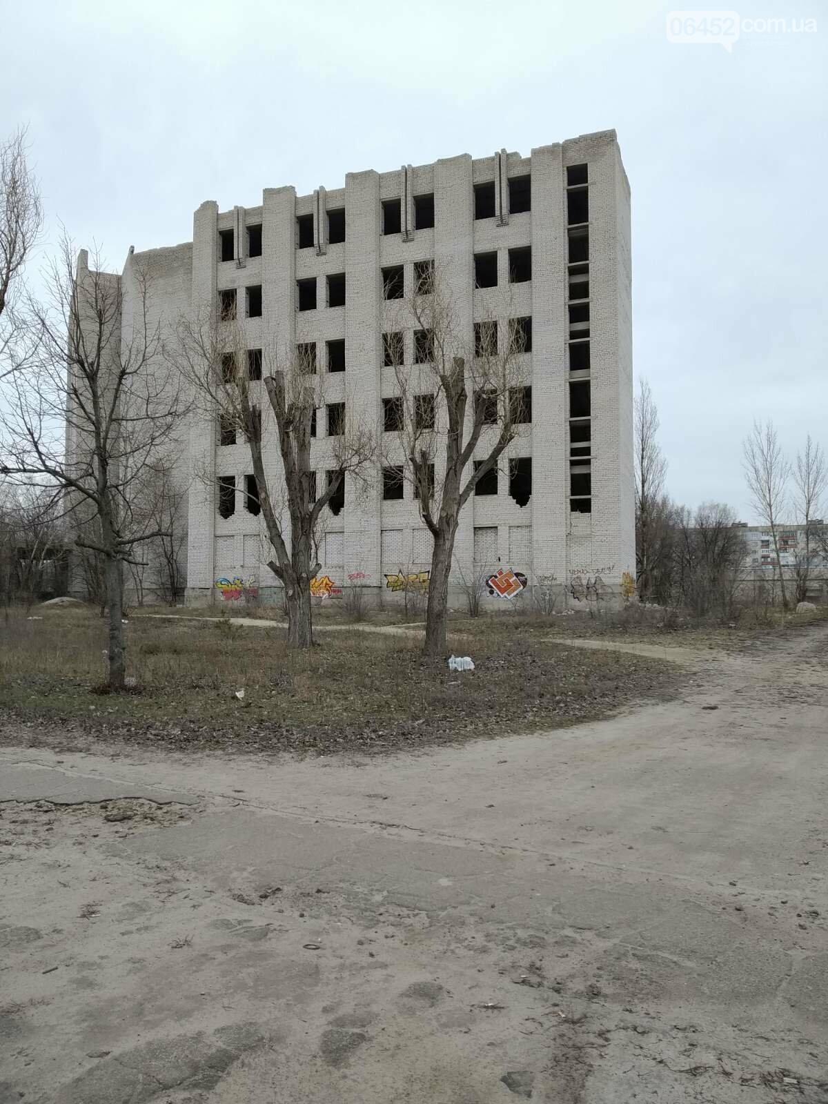 Сезон обрезанных крон в Северодонецке объявляется открытым: законно ли?, фото-1