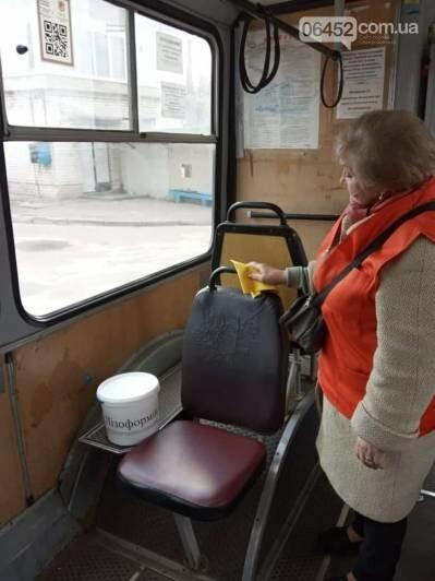 В Северодонецких  троллейбусах проводят санитарную обработку, фото-1