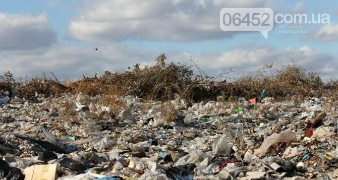 Вопрос вывоза мусора в Северодонецке до сих пор остается актуальным, фото-14