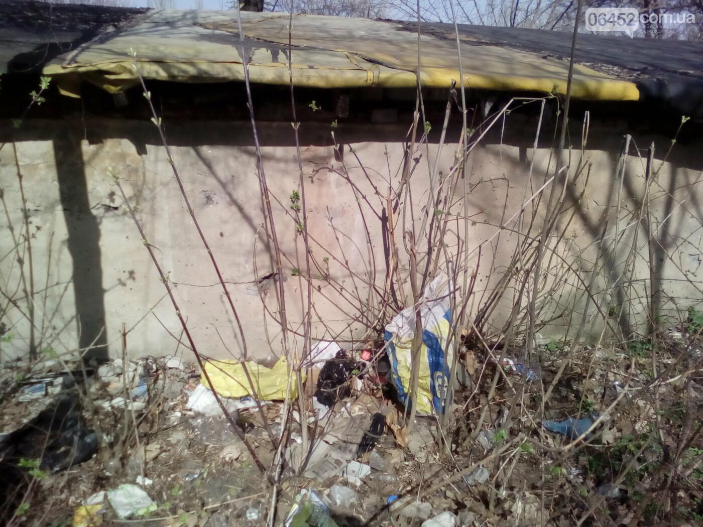 Вопрос вывоза мусора в Северодонецке до сих пор остается актуальным, фото-13