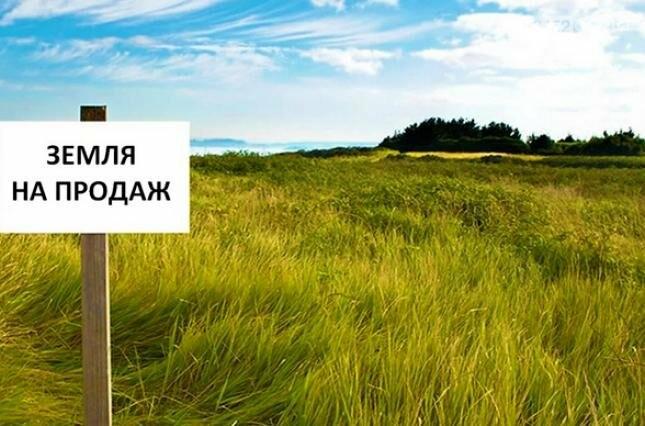 Рада приняла закон о рынке земли: что нужно знать, фото-1