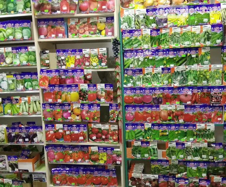 Сад-огород, можно ли сейчас купить посевной материал в Северодонецке, фото-4