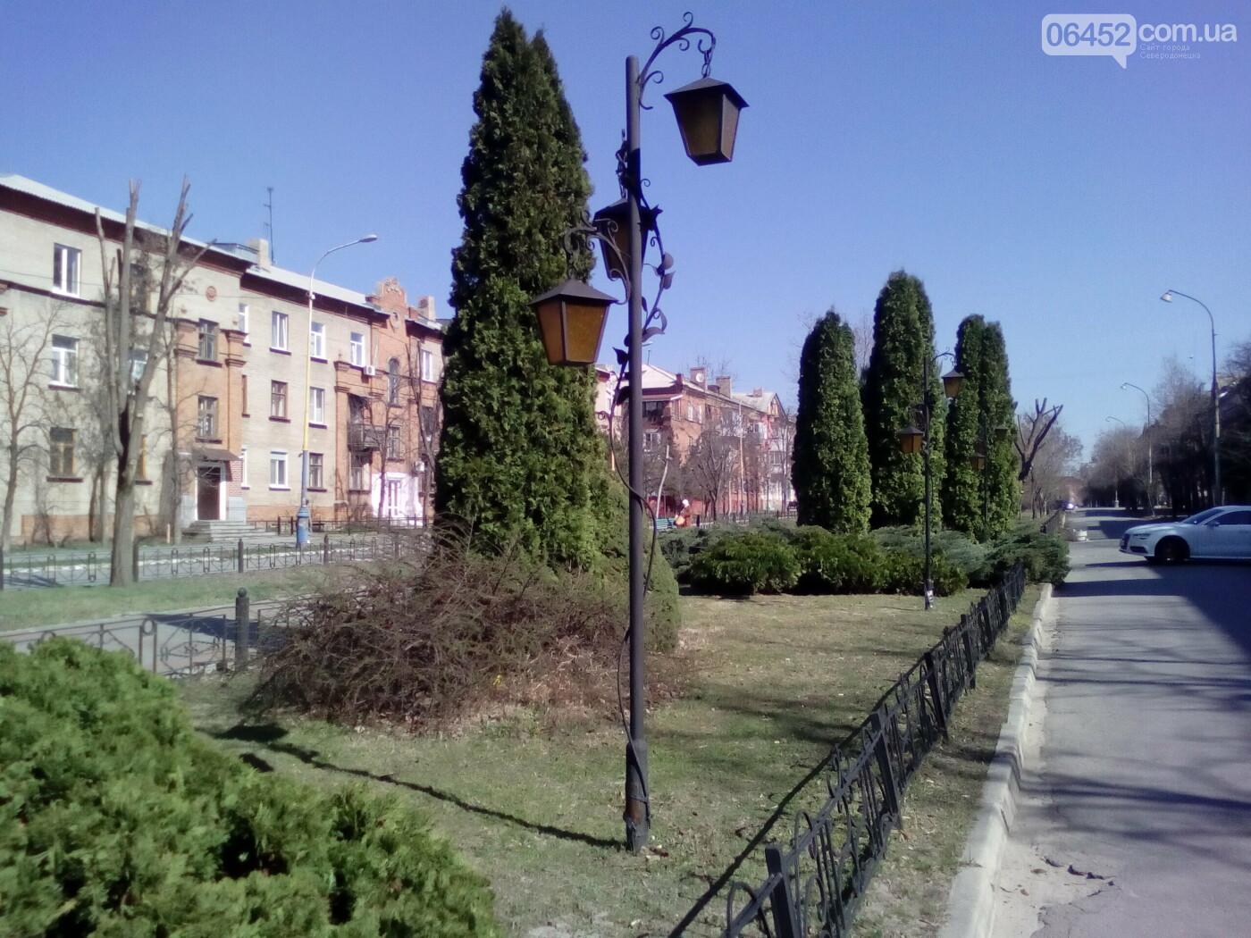 Весна в Северодонецке. Фотопрогулка, фото-5