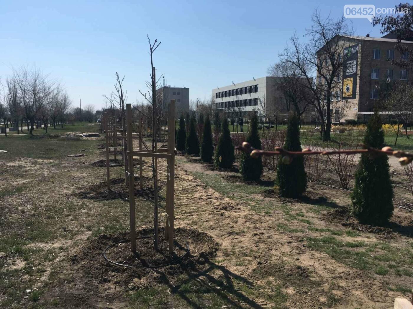 Весна в Северодонецке. Фотопрогулка, фото-14