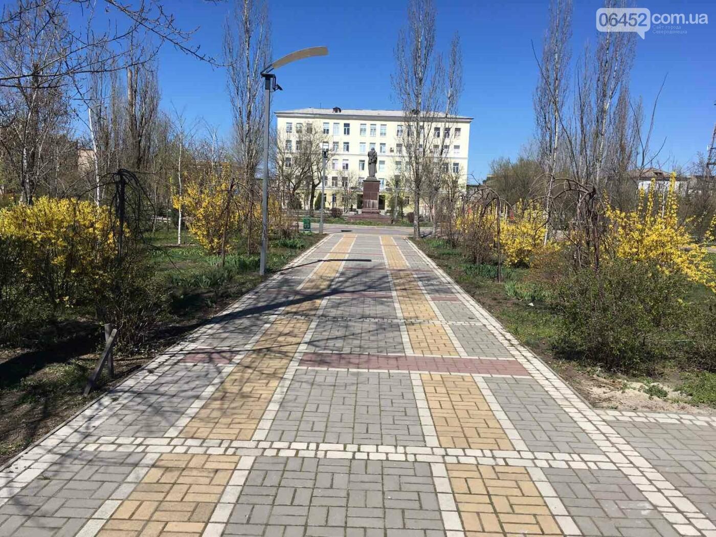 Весна в Северодонецке. Фотопрогулка, фото-15
