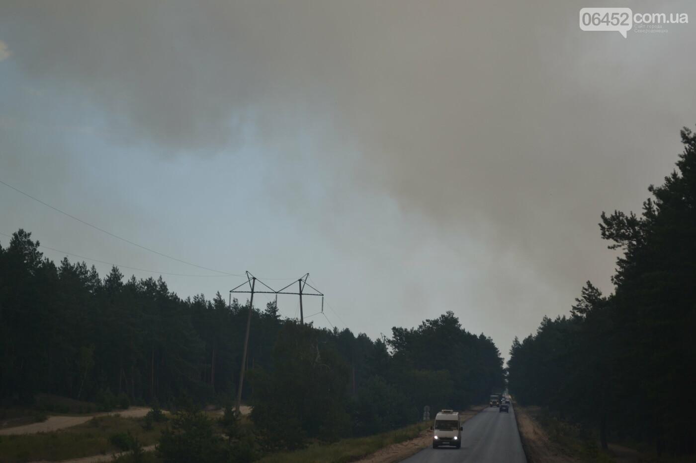 За Северодонецком новое массовое возгорание леса (видео) , фото-2