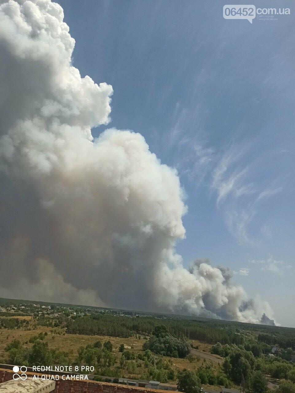 За Северодонецком новое массовое возгорание леса (видео) , фото-7