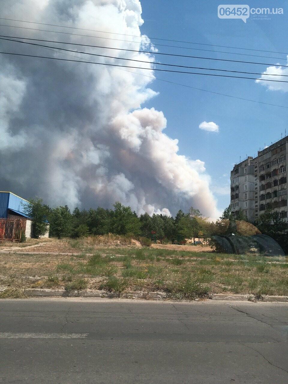 За Северодонецком новое массовое возгорание леса (видео) , фото-9