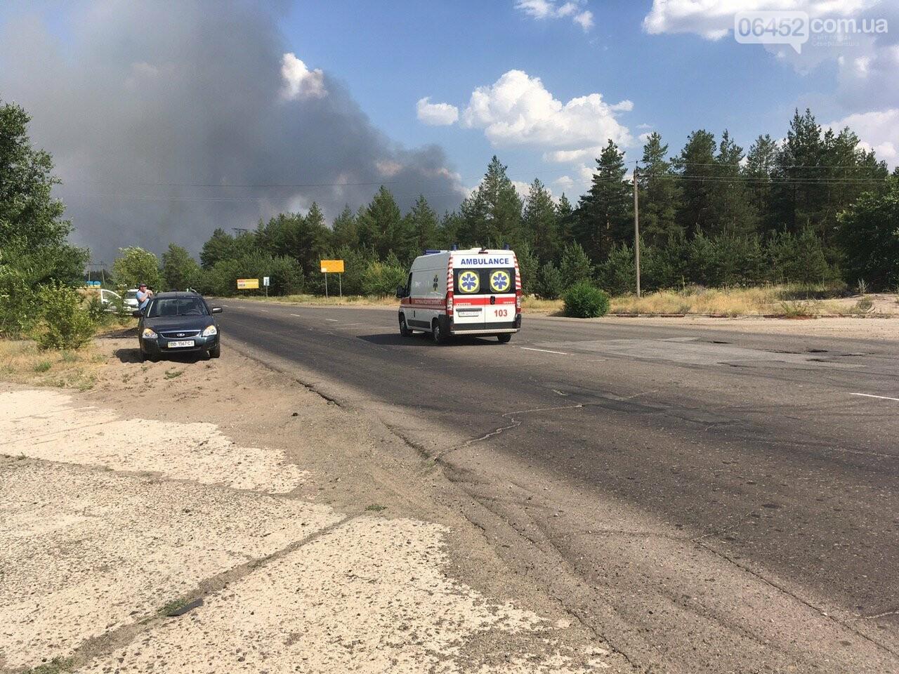 Масштабный пожар в Новоайдарском районе продолжает разрастаться (фото, видео), фото-3