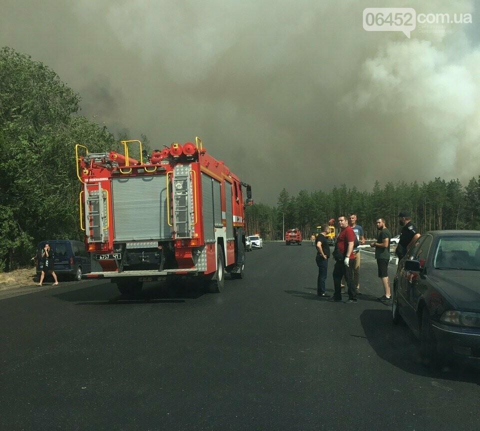 Масштабный пожар в Новоайдарском районе продолжает разрастаться (фото, видео), фото-1
