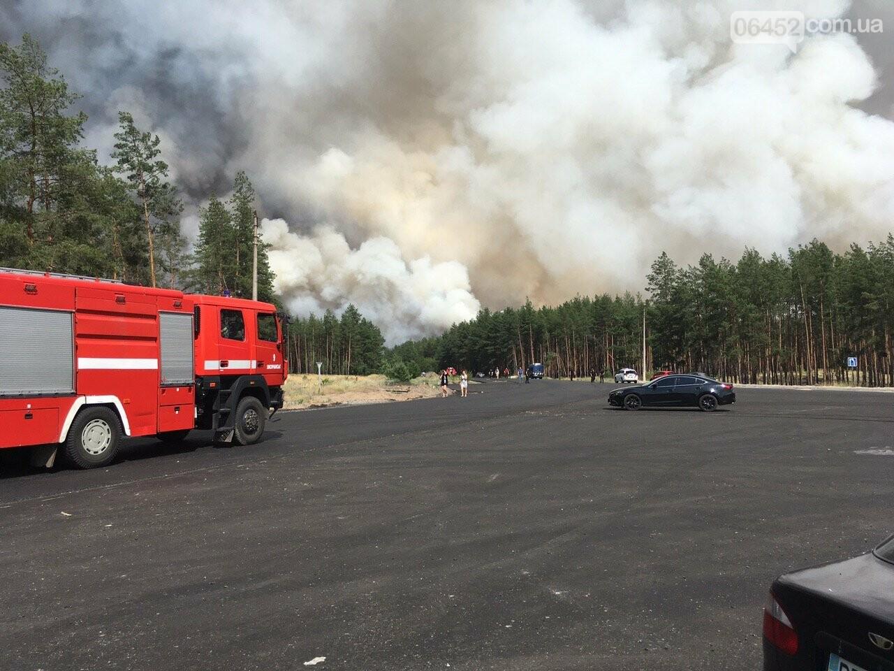 Масштабный пожар в Новоайдарском районе продолжает разрастаться (фото, видео), фото-2