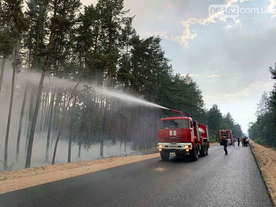 Во время лесного пожара возле Смоляниново погибли четыре человека, фото-2