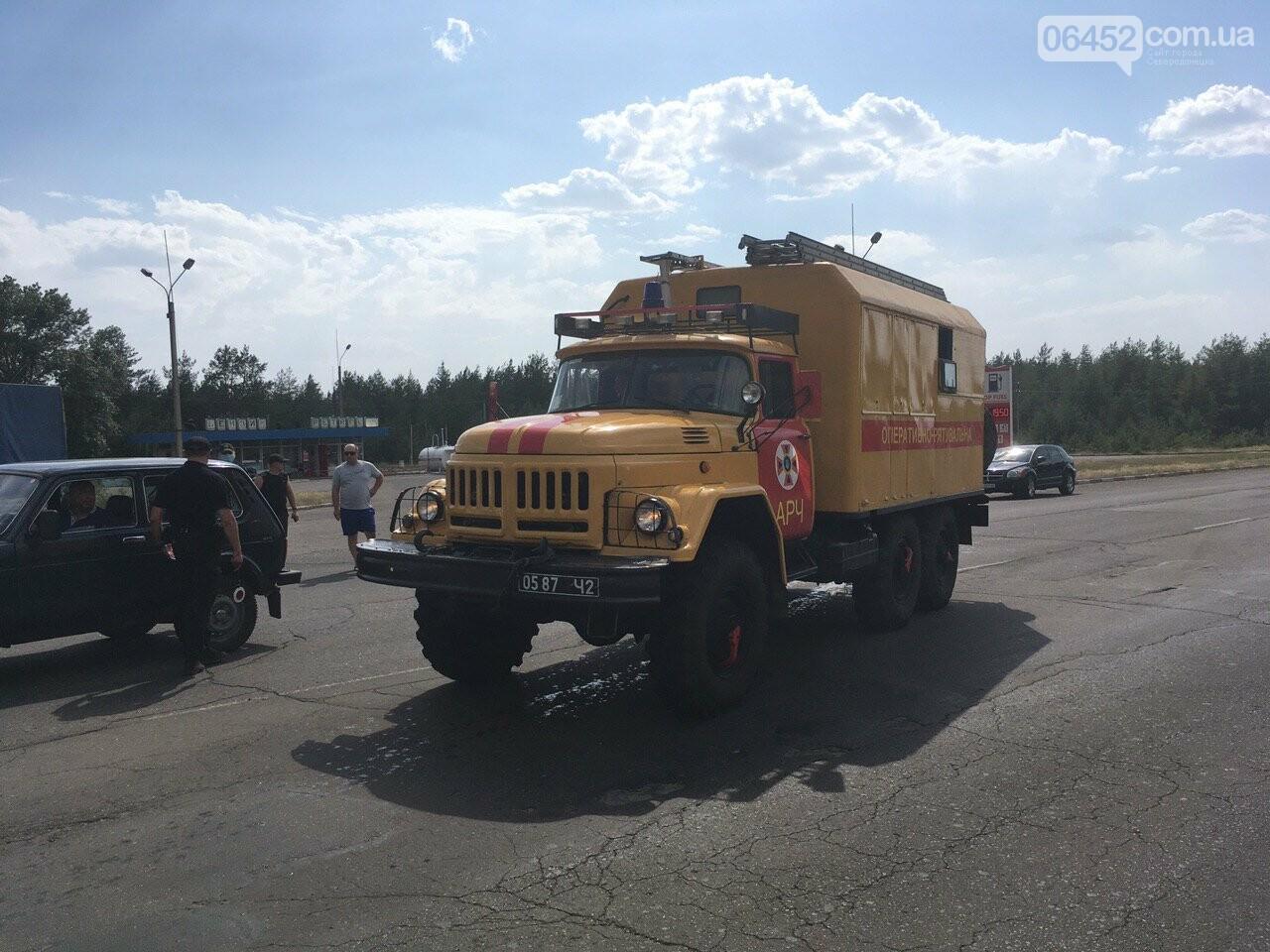 Во время лесного пожара возле Смоляниново погибли четыре человека, фото-1