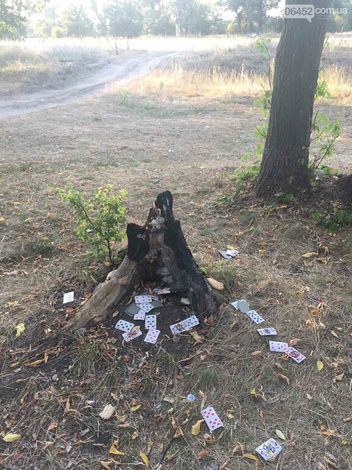 Мусорить по-северодонецки. Какое наказание ожидает нарушителей чистоты, фото-3