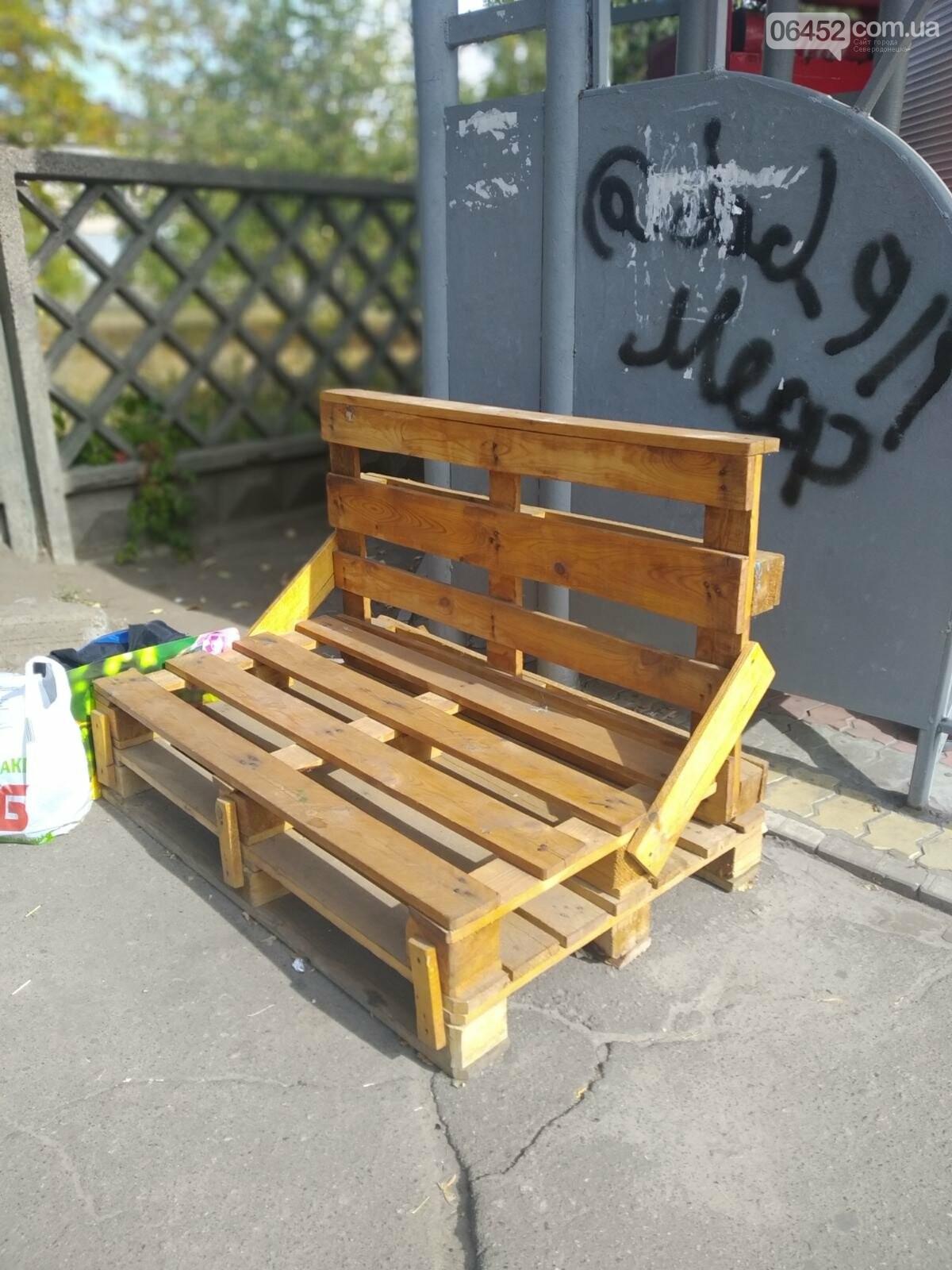 Северодонецк украсили необычные скамейки ( фото) , фото-3