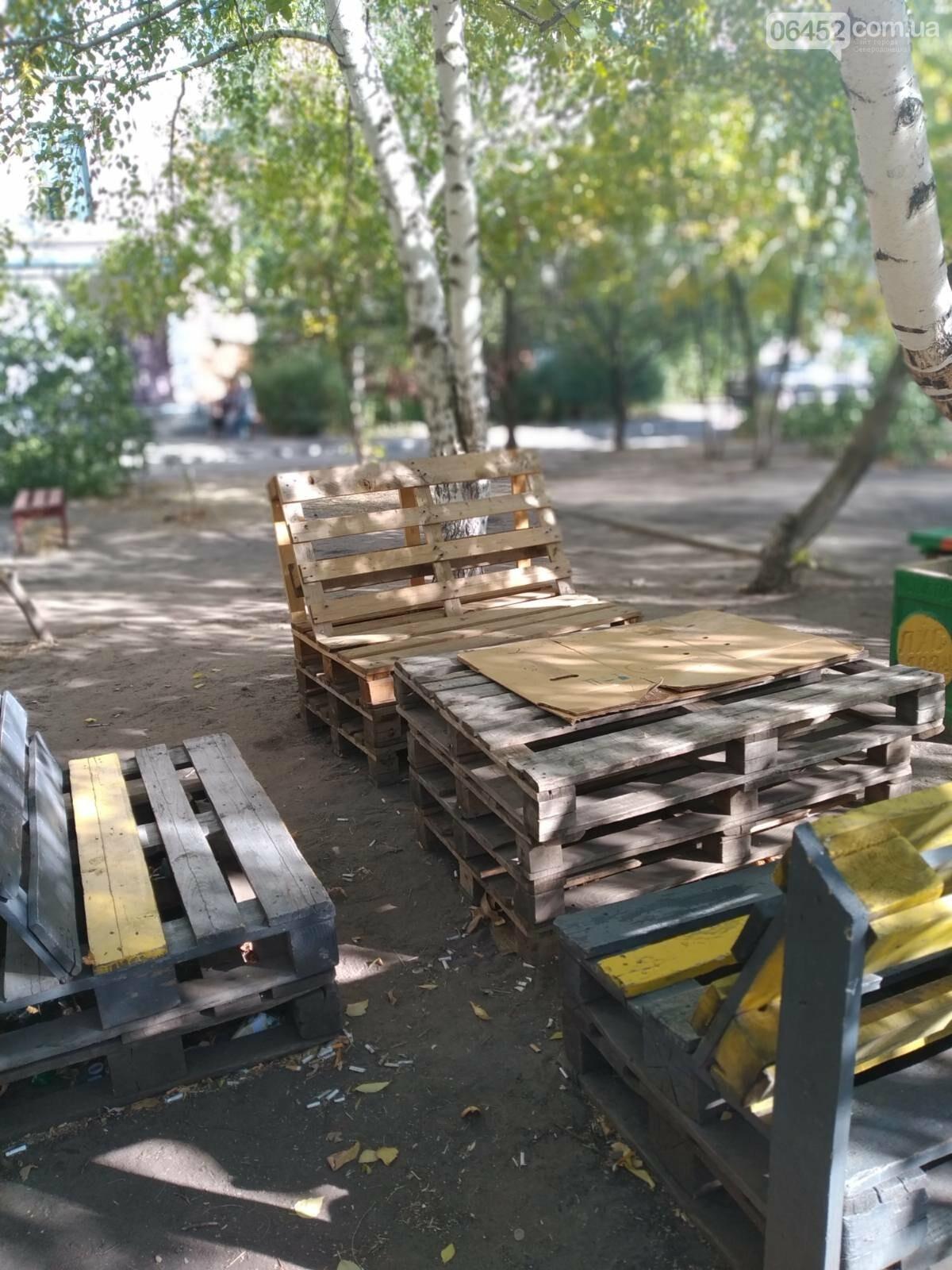 Северодонецк украсили необычные скамейки ( фото) , фото-1