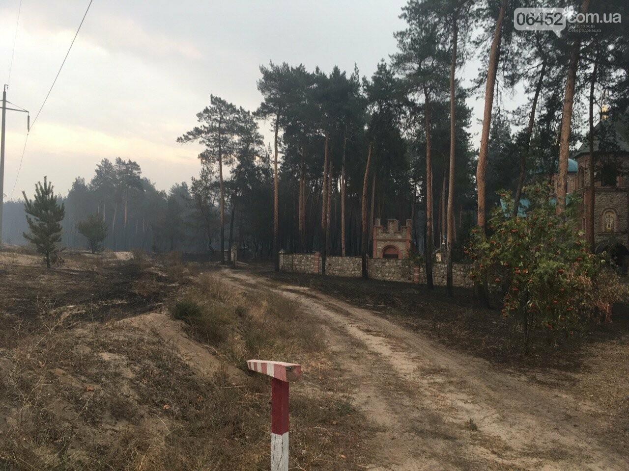К тушению пожаров под Северодонецком подключена авиация (фото, видео), фото-2