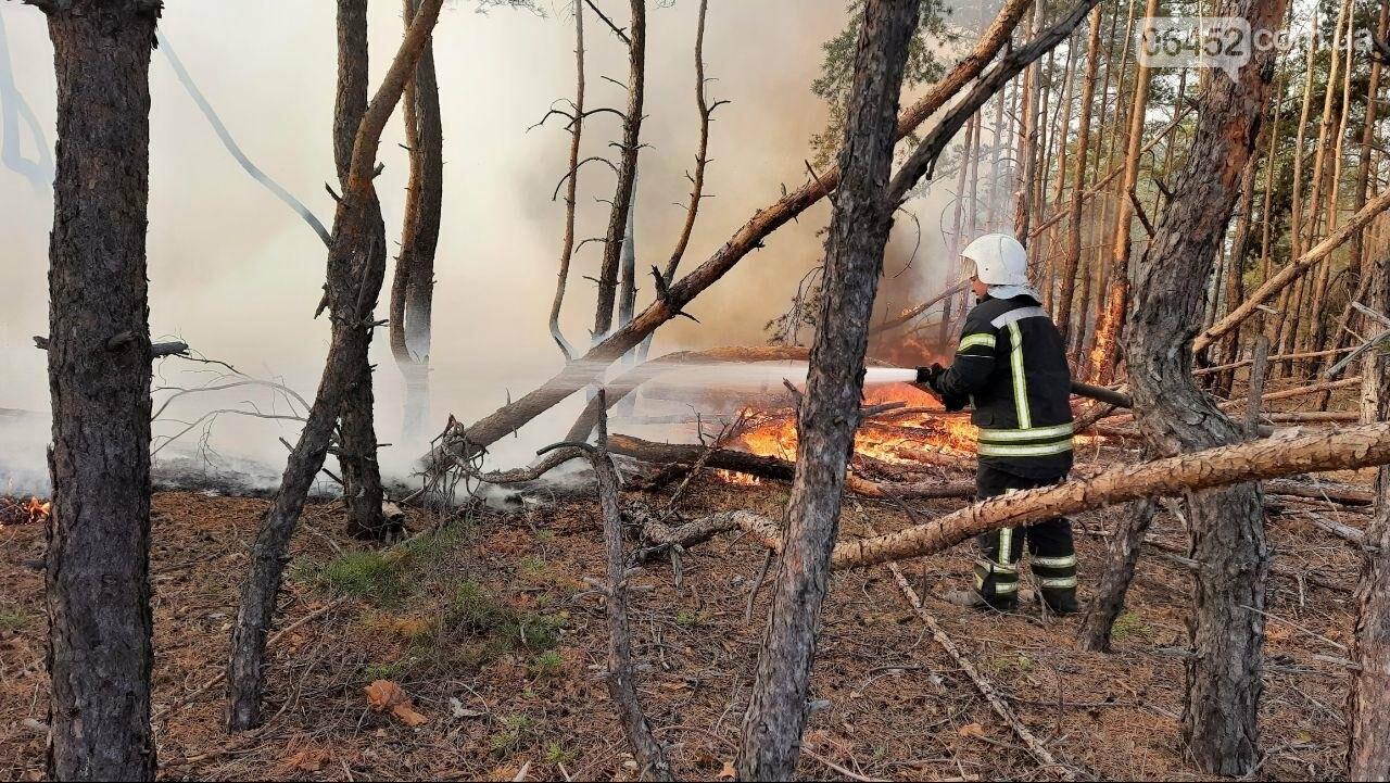 Пожары на Луганщине практически потушены. Проблемным остается один участок, фото-1