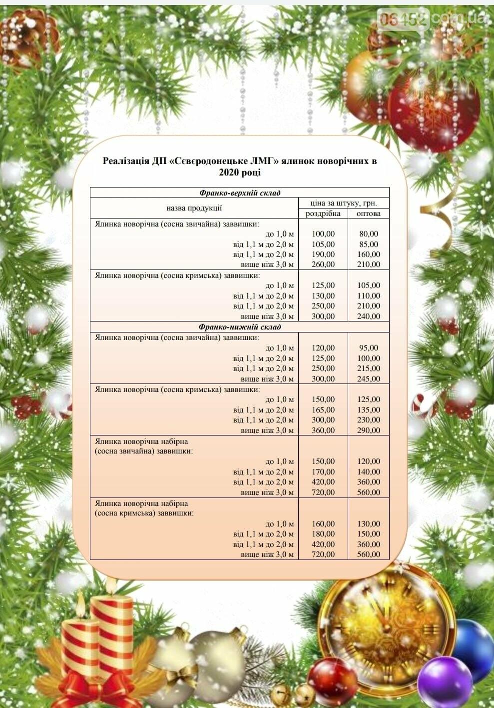 Лесники Северодонецка рассказали, какими в этом году будут цены на новогодние елки, фото-2
