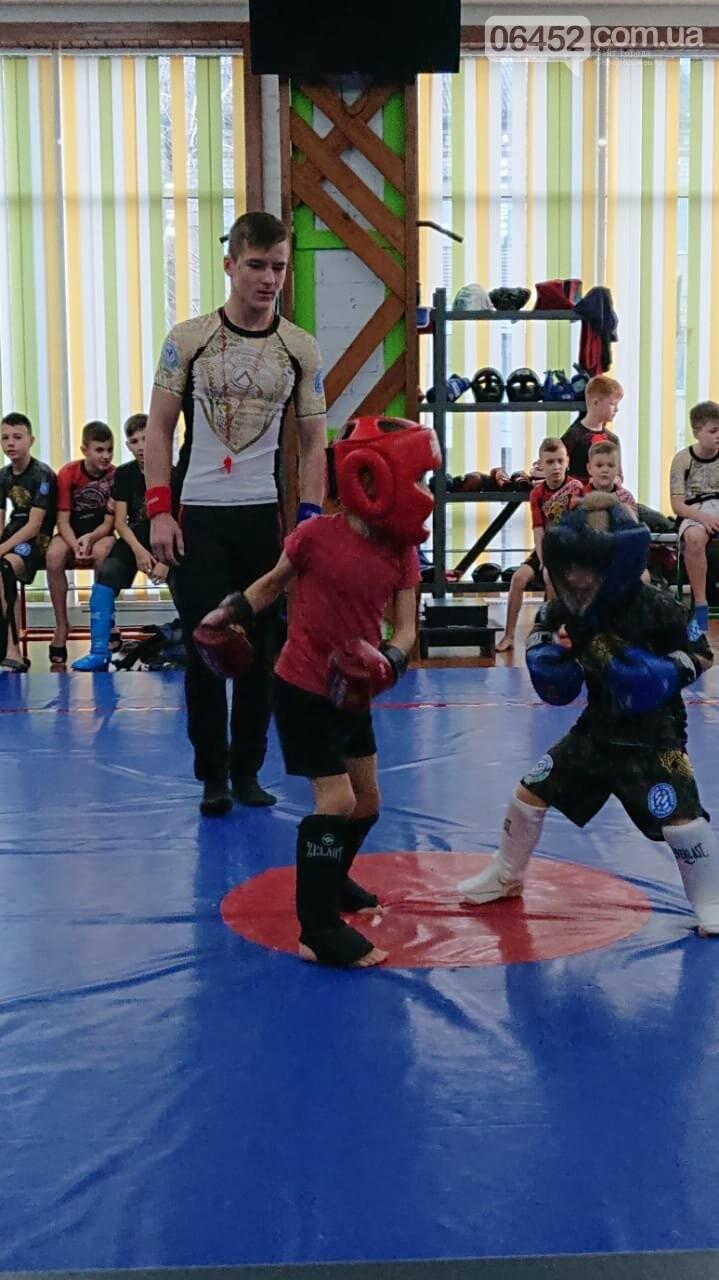 В Северодонецке прошел новогодний турнир по панкратиону , фото-1