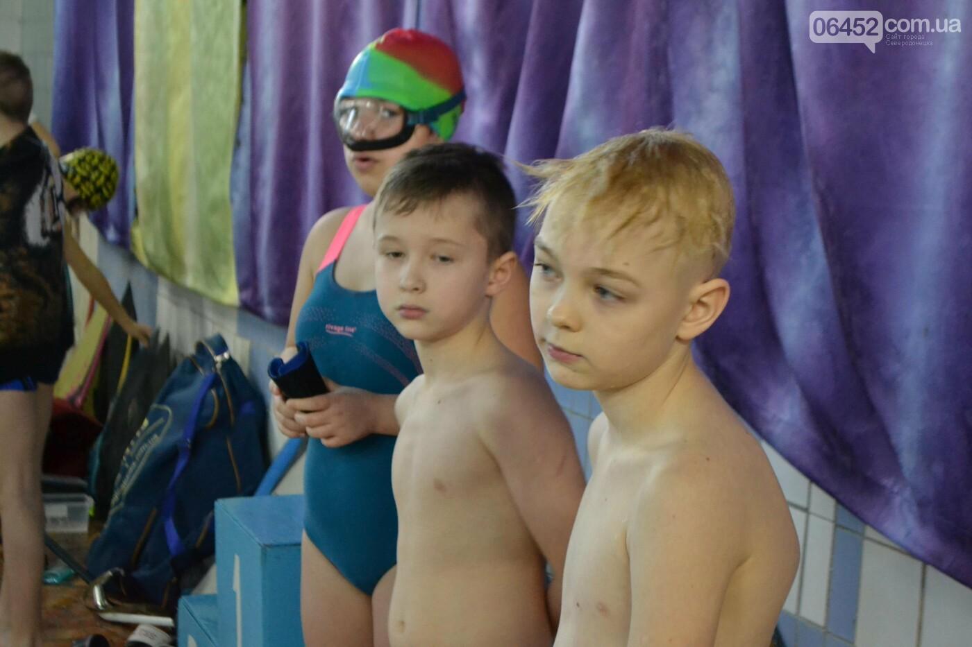 В Северодонецке проходит Чемпионат области по подводным видам спорта (фото, видео) , фото-5