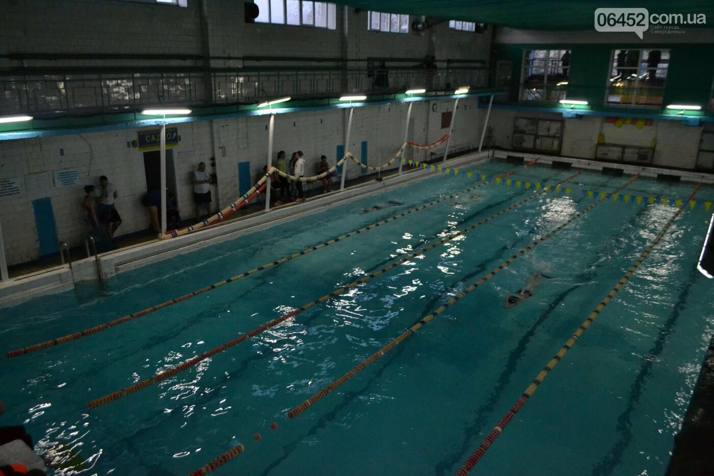 В Северодонецке проходит Чемпионат области по подводным видам спорта (фото, видео) , фото-19
