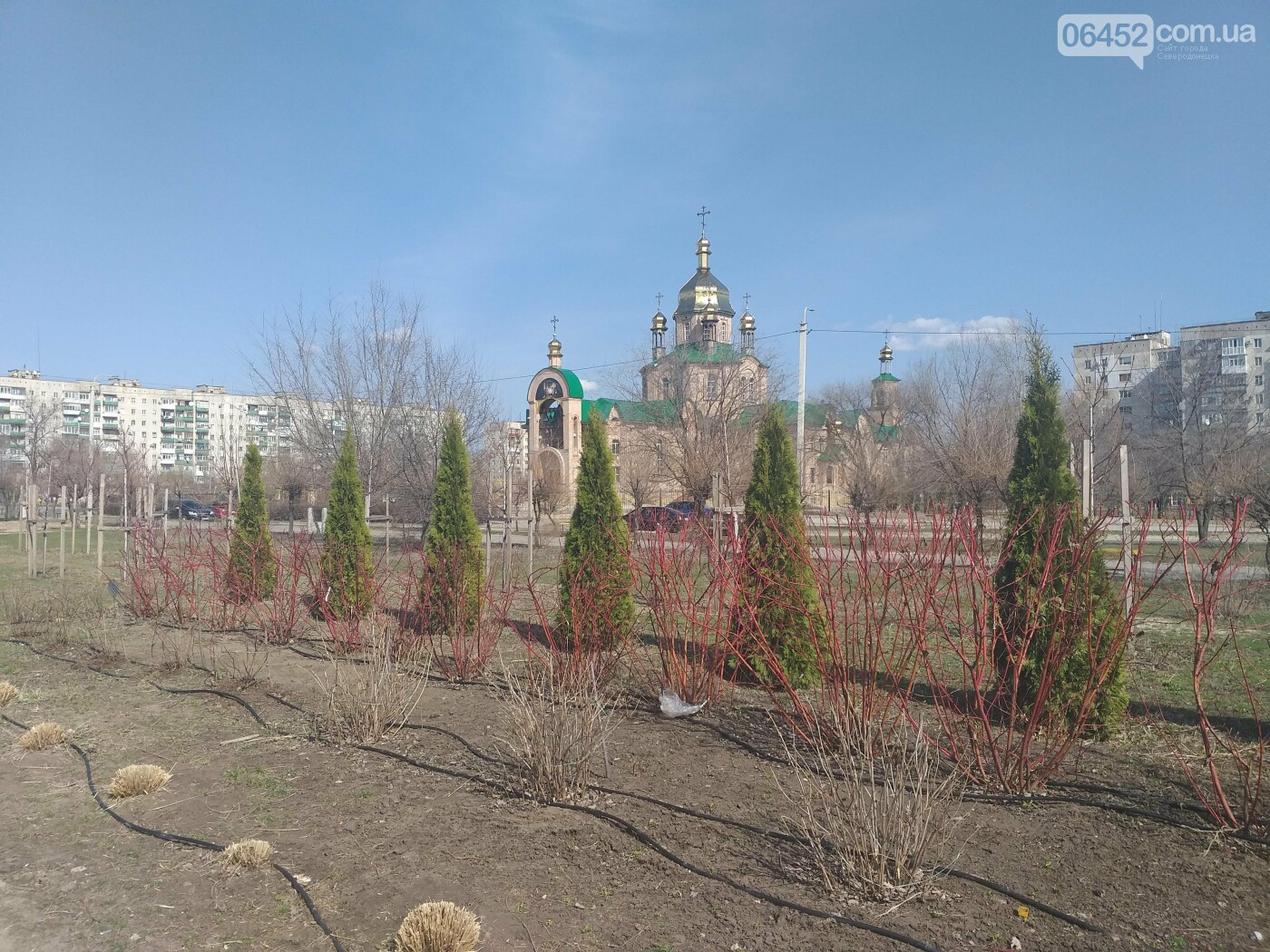 Фото дня: В Северодонецк пришла теплая весна, фото-17