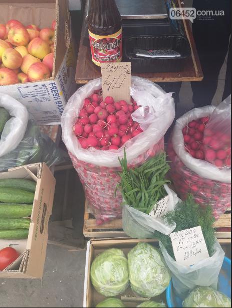 Ранний овощ: сравниваем цены на редис в Северодонецке , фото-1