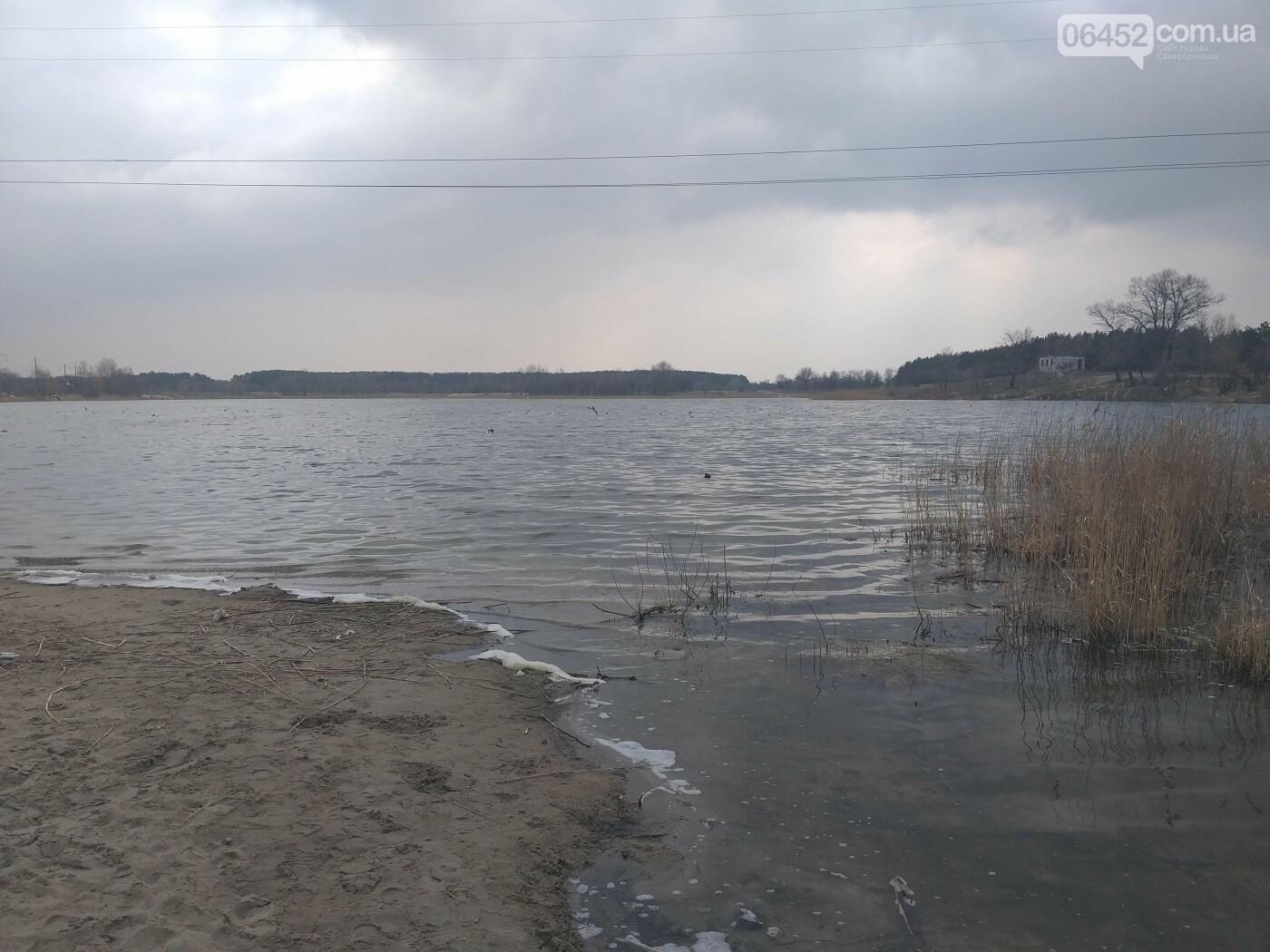 «Зеленая весна» в Северодонецке. Как благоустраивают город после зимы (фото), фото-13