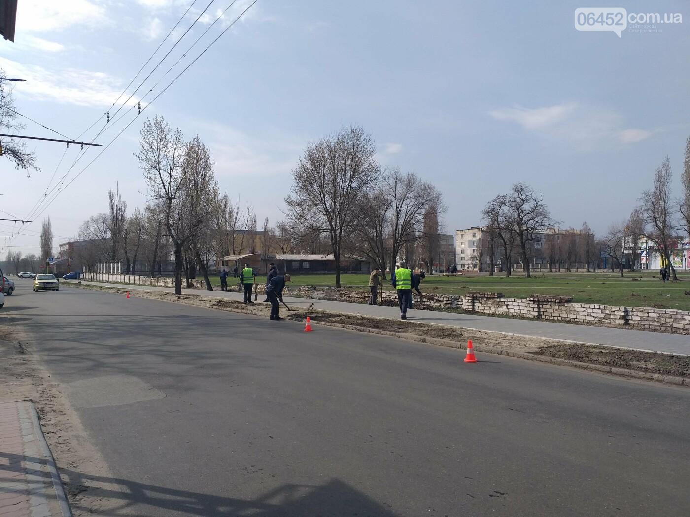 «Зеленая весна» в Северодонецке. Как благоустраивают город после зимы (фото), фото-10